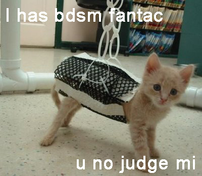 BDSM Kitty